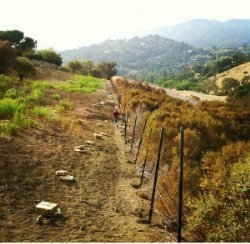 Chain Link Fence Installers in San Jose